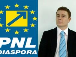 ionescu pnl diaspora
