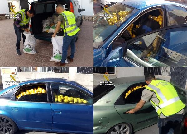 Furau lămâi cu mașini închiriate. Zece români arestați
