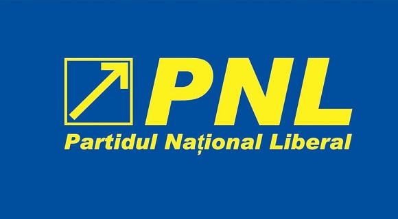 """PNL Spania: """"Nu există modelul Italia. Ce spune vicepreședintele PMP Diaspora e o aberație!"""""""