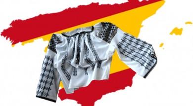 Ministerul Românilor de Pretutindeni ignora asociațiile