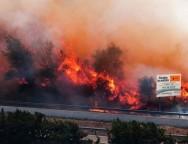 Incendiu de pădure între Spania și Franța