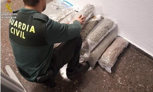 Valencia. Român prins cu 15 kilograme de marijuana. Le-a spus polițiștilor că sunt plante medicinale